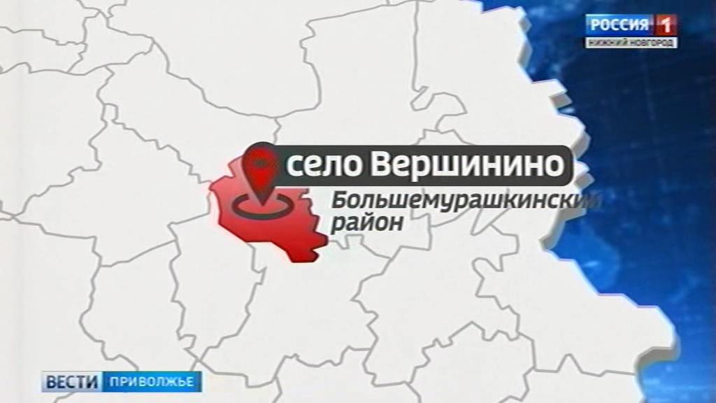 1-ый случай бешенства в 2017г. зарегистрирован вБольшемурашкинском районе Нижегородской области