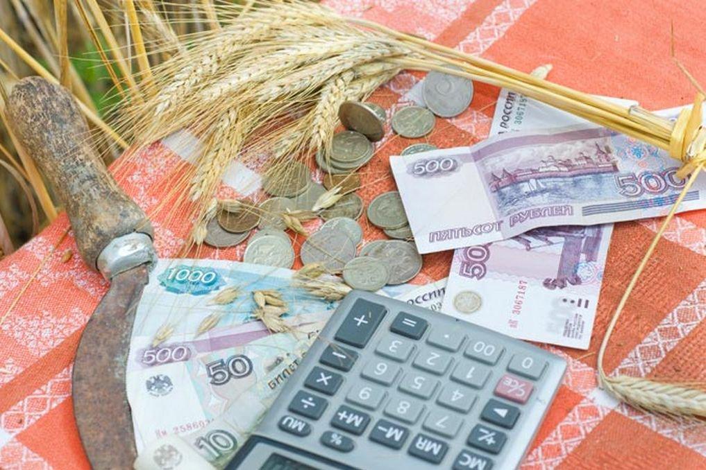 ВНижегородской области 59 хозяйств получили гранты на83 млн