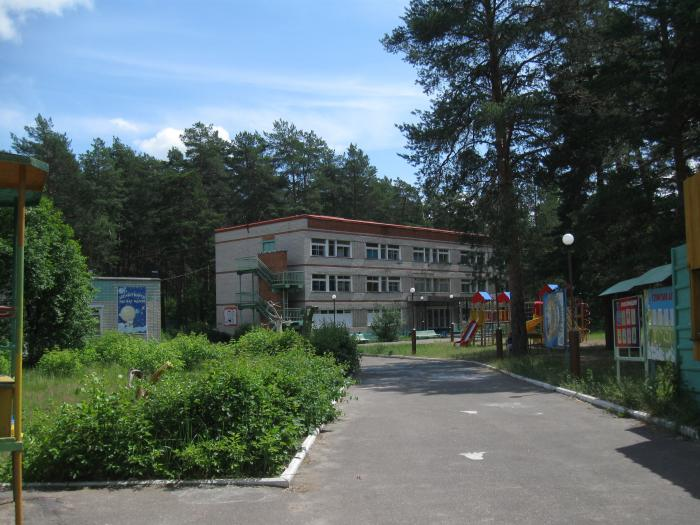 ВДзержинске отыскали подростка, сбежавшего издетского лагеря
