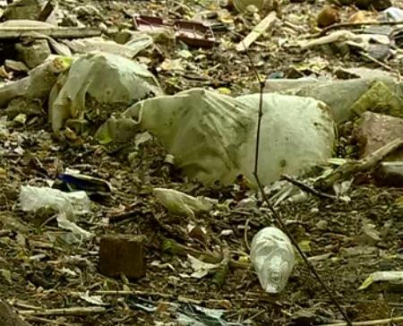 Преступный полигон твердых бытовых отходов обнаружили вНижегородской области